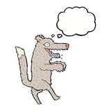 cartoon big bad wolf with thought bubble Royalty Free Stock Photography