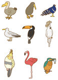 Cartoon bird icon Stock Images