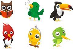 Cartoon bird set. Six Cartoon full color birds set, with owl, parrot, toucan and woodpecker  illustration Stock Images