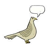 cartoon bird with speech bubble Royalty Free Stock Image