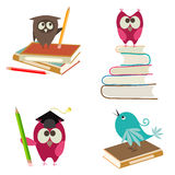 Cartoon birds with books and pencils Stock Images
