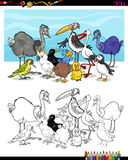 Cartoon birds for coloring Stock Photography
