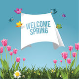 Cartoon birds flying with spring cleaning message Royalty Free Stock Image