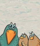 Cartoon birds - funny crow and sparrows. Funny crow and two sparrows watching with amazement. Vector of cartoon birds Stock Image
