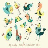 Cartoon birds. Funny  set Royalty Free Stock Images
