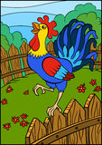 Cartoon birds for kids. Beautiful cute rooster. Royalty Free Stock Photos