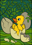 Cartoon birds for kids. Little cute duckling. Royalty Free Stock Image