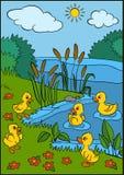 Cartoon birds for kids. Little cute ducklings. Royalty Free Stock Photos