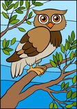 Cartoon birds for kids. Little cute owl. Cartoon birds for kids. Little cute owl sits on the tree branch and smiles royalty free illustration