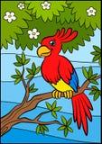 Cartoon birds for kids. Little cute parrot. Stock Photography