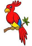 Cartoon birds for kids. Little cute parrot. Royalty Free Stock Photos