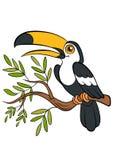 Cartoon birds for kids. Little cute toucan. Stock Image