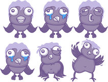 Cartoon birds Stock Images