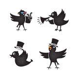 Cartoon birds set Stock Images