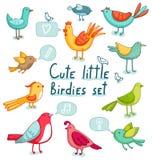 Cartoon birds set. Birds set. Super cute 11 birdies and a few signs Royalty Free Stock Image