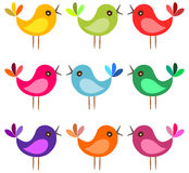 Cartoon birds sing on white background. Stock Image