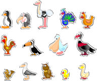 Cartoon birds,vector Royalty Free Stock Photo