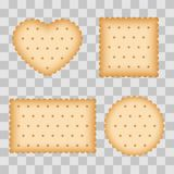 Cartoon biscuit, eating pastry, breakfast cookies. Isolated on transparent background. Vector illustration Royalty Free Stock Image