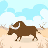 Cartoon Bizon Desert Sand Buffalo Colorful Stock Photography