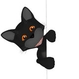 Cartoon black cat with a blank board Stock Images