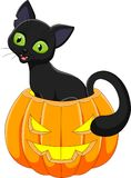 Cartoon black cat sitting in Halloween pumpkin. Illustration of Cartoon black cat sitting in Halloween pumpkin Royalty Free Stock Images