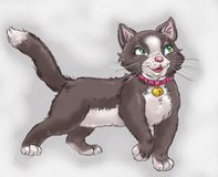 Cartoon black cat with white mittens artistic character illustration stock illustration