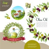 Cartoon Black And Green Olive Template. With olive branch wreath cans bottle of natural oil building on hill vector illustration vector illustration