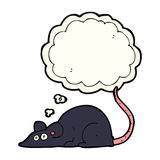 Cartoon black rat with thought bubble Royalty Free Stock Photos