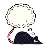 Cartoon black rat with thought bubble Royalty Free Stock Photo