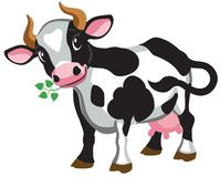 Cartoon black spotted cow isolated on white stock illustration