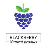 Cartoon blackberry label Royalty Free Stock Photography