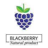 Cartoon blackberry label. Vector image of a cartoon blackberry label vector illustration