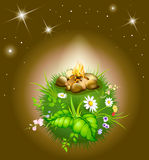 Cartoon blossoming night globe Royalty Free Stock Image