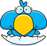 Cartoon Blue Bird Hatch Royalty Free Stock Photography