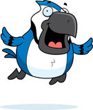 Cartoon Blue Jay Flying Royalty Free Stock Photos