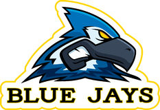 Cartoon Blue Jay Mascot Stock Images