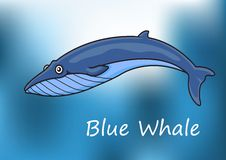 Cartoon blue whale swimming underwater Stock Photos