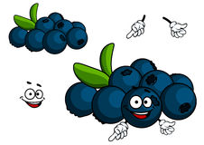 Cartoon Blueberry character Stock Images