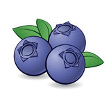 Cartoon blueberry. Royalty Free Stock Photography