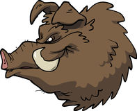 Cartoon boar's head Royalty Free Stock Photography