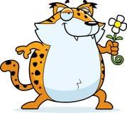 Cartoon Bobcat Flower. A happy cartoon bobcat with a flower Royalty Free Stock Photography