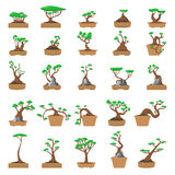 25 Cartoon bonsai trees set Royalty Free Stock Photo