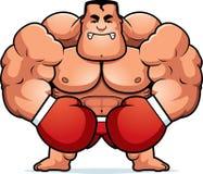 Cartoon Boxer Angry Royalty Free Stock Image