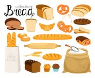 Cartoon bread collection. Vector bread collection. Cuisine cartoon bakery food, bagel and baguette, wheat bread slices for breakfast, croissant and small pretzel vector illustration