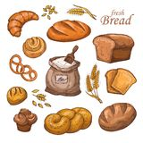 Cartoon bread, fresh bakery product, flour, ears of wheat. Hand drawn vector set isolated on white background Royalty Free Stock Photos