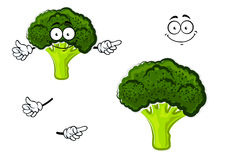 Cartoon broccoli vegetable with green head. Healthful cartoon fresh broccoli vegetable character with dark green curly head and funny face, for agriculture or Royalty Free Stock Photography