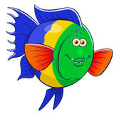 Cartoon broomtail wrasse Stock Images