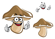 Cartoon brown forest mushroom character Stock Images
