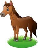 Cartoon brown horse on the grass vector illustration