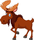 Cartoon brown moose isolated on white background Royalty Free Stock Image